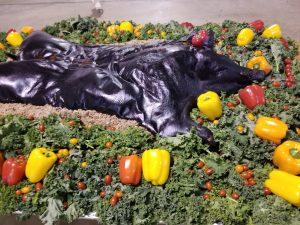 Burks-Farm-pig-roast-hampton